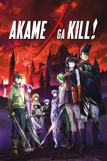 Убийца Акаме! постер